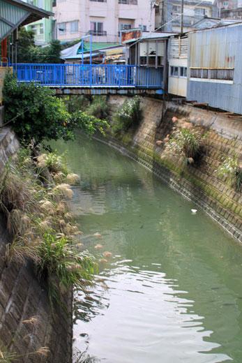 農連市場・ガーブ川