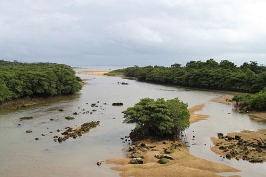 石垣島・宮良川
