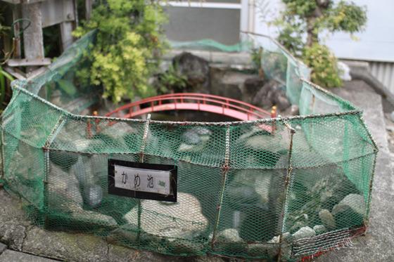 大雄山駅・かめ池