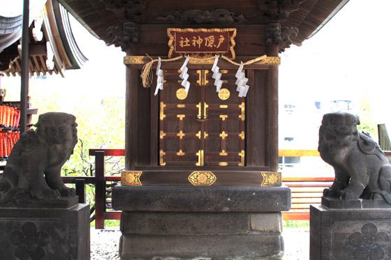 湯島天神・戸隠神社