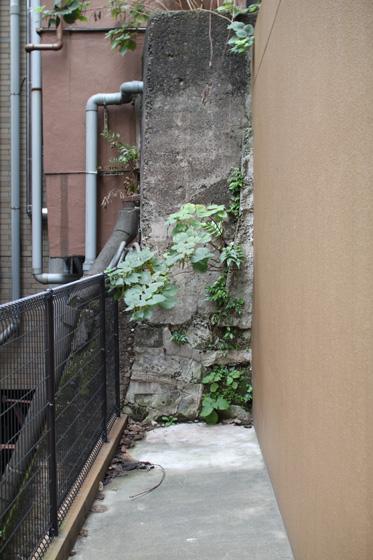 湯島天神・実盛坂途中の石垣跡