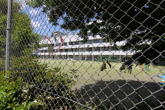 校庭よりの湯島小学校
