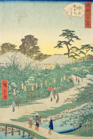 広重「向しま花屋敷七草」