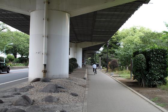 隅田川東岸・旧墨堤