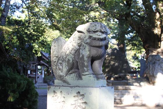 鶴谷八幡宮の狛犬