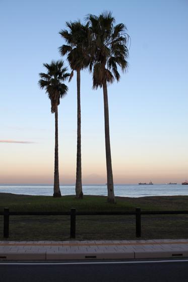 館山の海岸(早朝)