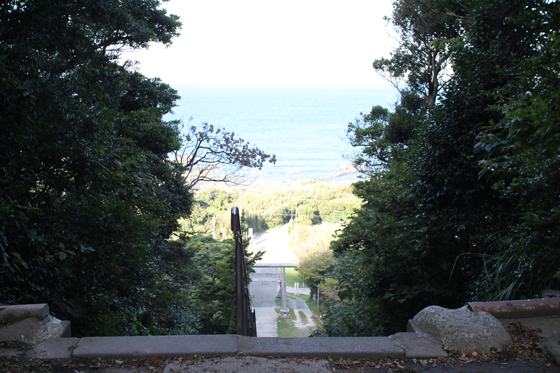 洲崎神社からの眺め