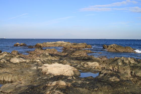 洲崎岬から浦賀水道を見る