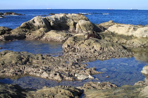 洲崎岬の海岸