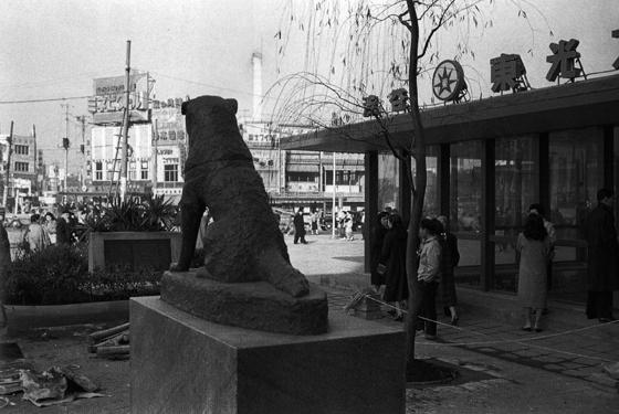 昭和30年代のハチ公像