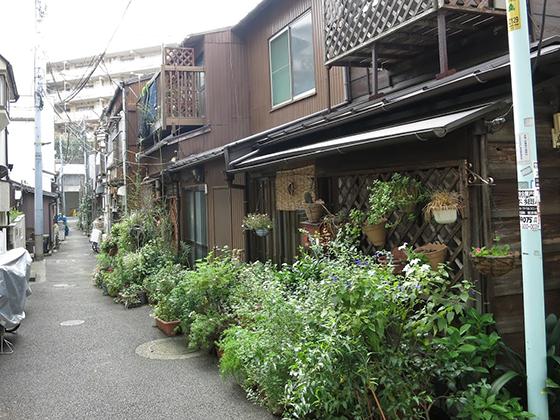 菊坂の長屋