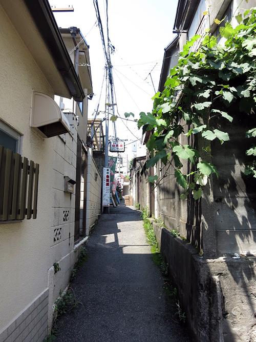 金魚坂の路地